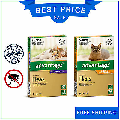 Advantage for Cats 4 Pipettes by Bayer Flea Treatment All Sizes AU Stock New