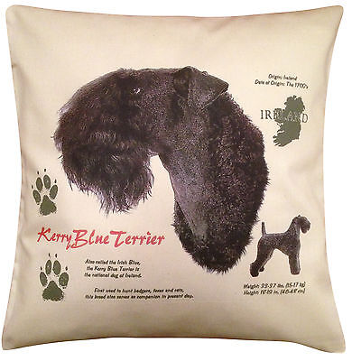 Kerry Blue Terrier History Cotton Cushion Cover - Cream or White - Gift Item