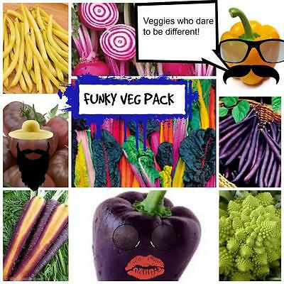 Unusual Funky Colours Vegetable Seeds Pack  435 Seed Rare And Diffrerent Fun