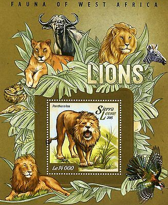 Sierra Leone 2015 MNH Lions Fauna of West Africa 1v S/S II Wild Animals Stamps