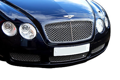 Bentley Continental GT Lower Grille  (Grill) Set - Silver finish (2003 to 2007)