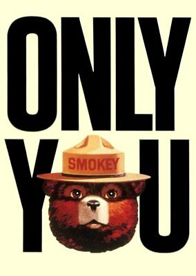 Smokey The Bear Poster Only You Forest Fires 24x36