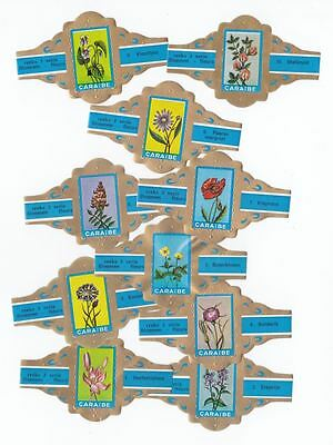 10 cigar bands Caraibe Flowers blue iss in 1969