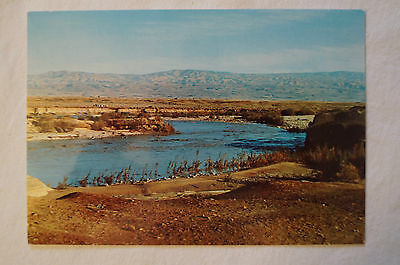 The Jordan River - Thy Kingdom Come - Vintage - Postcard.