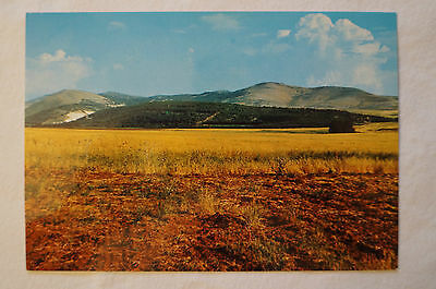 Mountains of Gilboa - Love your enemies - Vintage - Postcard.