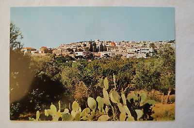 Cana of Galilee - Give us this day our daily bread - Vintage - Postcard.
