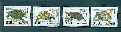Tortues - Turtles & Tortoises Bulgary 1999