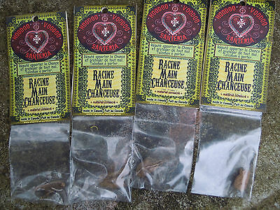 Lucky Hand Root Spell Supplies Spells Luck Talisman charm bag herb Protection