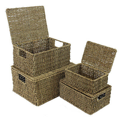 Seagrass Lidded Storage Basket Box Hamper - 4 sizes