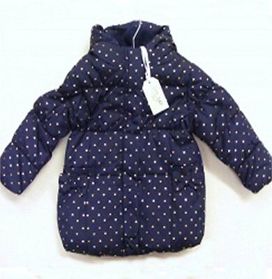 Zip Zap - Girls Coat Navy Blue with Gold Hearts Padded Coat