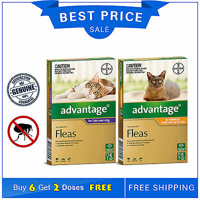 Advantage for Cats Flea Treatment 6 Pipettes + FREE 2 Pipettes by Bayer AU Stock