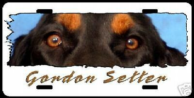 "Gordon Setter on white ""The Eyes Have It"" License Plate"