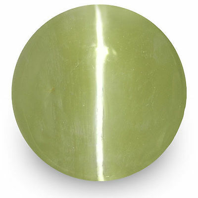 1.70-Carat IGI-Certified Yellowish Green Chrysoberyl Cat's Eye from Sri Lanka