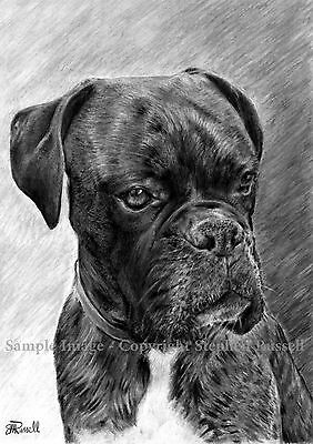 'Portrait 3' B&W - Boxer Dog Art Print of original pencil drawing by RussellArt