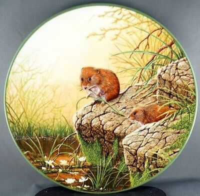 W G Rollinson Foraging Bank Voles Collector Plate Royal Doulton.
