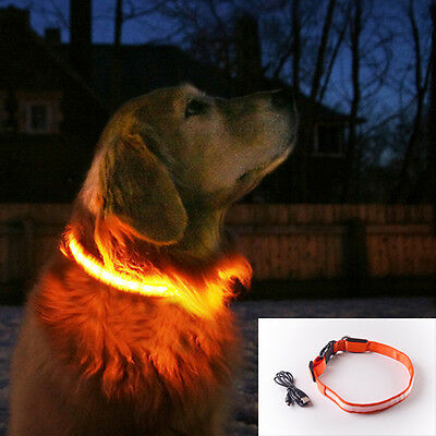 S-M-L-XL size ORANGE USB rechargeable LED illuminated safety COLLAR for dogs