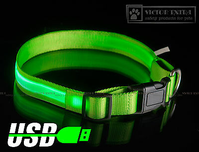 S-M-L-XL size GREEN USB rechargeable LED illuminated safety COLLAR for dogs