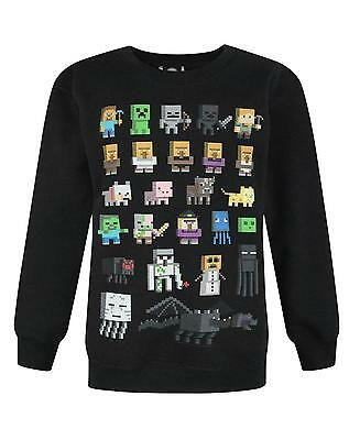 Minecraft Sprites Boy's Sweatshirt