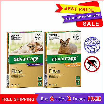 Advantage for Cats 6 Pipettes + 2 FREE Pipettes Flea Treatment by Bayer New