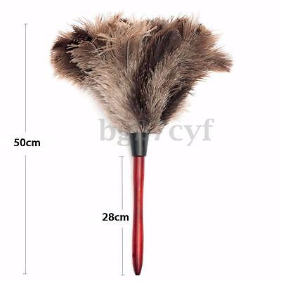 PROFESSIONAL NATURAL GREY OSTRICH FEATHER DUSTER BRUSH Wood Handle 550MM 15 INCH