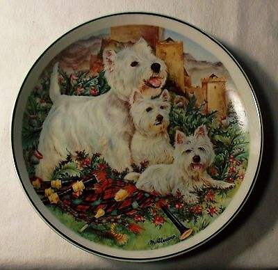 West Highland White Terrier with Puppies Collector Plate, Souvenir of Scotland