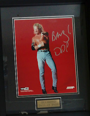 "Diamond Dallas Page WCW Wrestling Frame Signed Autograph 15"" x 11"" w/Certificate"