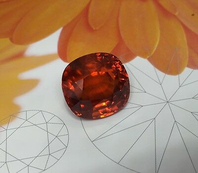 Spessartite Garnet natural gemstone 40.83 carats orange color very eye clean