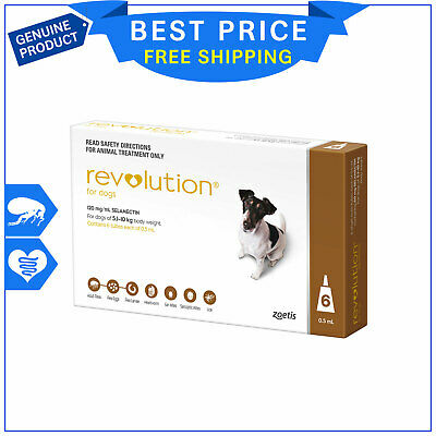 Revolution BROWN for Small Dogs 5.1 to 10 Kg 6 Pipettes + Canex by Zoetis