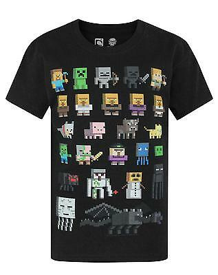 Official Minecraft Sprites Boy's Black T-Shirt