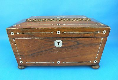 Antique Regency Rosewood & Mother of Pearl Inlay Sarcophagus Tea Caddy c.1820