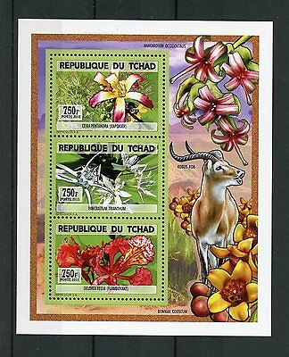 Chad Tchad 2015 MNH Orchids 3v Deluxe M/S Flowers Flora Flore