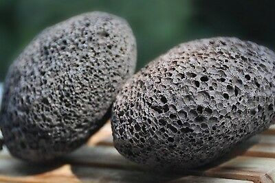 Natural Volcanic Oval Groomer Pumice Stone Pets Grooming Dog Horse Tool JCT ECO®