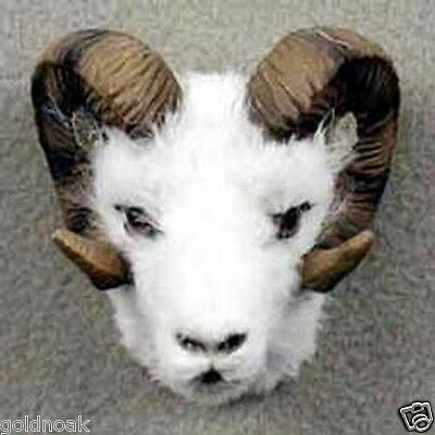 *SHEEP DALL! Collect Fur Magnets (Handcrafted & Hand painted)