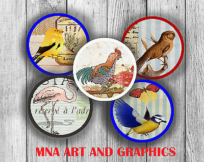 VINTAGE Birds mix  images1 inch circles - 25 mm square  collage PRECUT