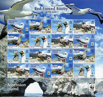 Ascension Island 2016 MNH Red-Footed Booby WWF 16v M/S Birds Boobies