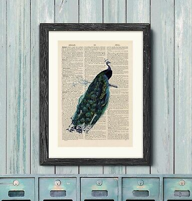 Antique Book page Art Print - Vintage Peacock Print Wall Art, Antique Dictionary