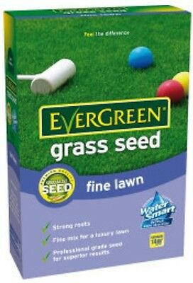 Evergreen Grass Seed Fine Lawn 420g, Specialist seed, Water smart