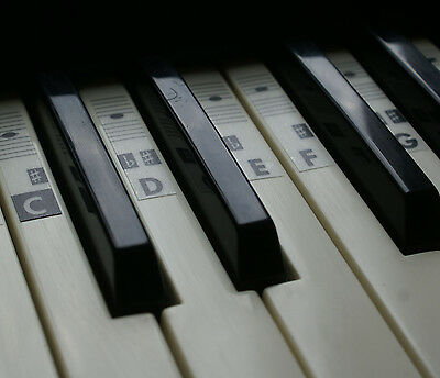 Piano Keyboard Music Note Stickers Labels Transparent  (37-88 keys) Vinyl