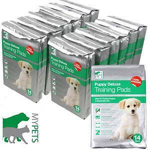 X 168 LARGE Puppy Deluxe Scented Training Pads 3 LAYERS Toilet Mat Dog Wee House