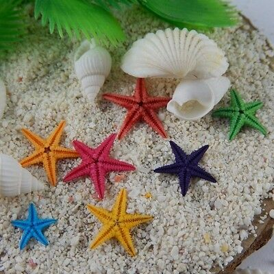 20pcs Colorful Natural Starfish Ornaments DIY Crafts Decor For Jewelry Making