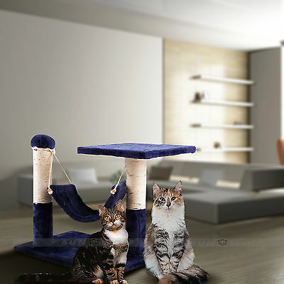 Chat Chats Arbre Kitten Gratter Grattage Post Jouet Alpinisme Activity Lit Sisal