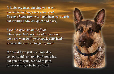 German Shepherd Dog Fridge Magnet  Pet loss Bereavement Memorial Gift