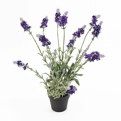 deko lavendel im keramiktopf hell und dunkelviolett 35 cm kunstlavendel eur 21 90. Black Bedroom Furniture Sets. Home Design Ideas