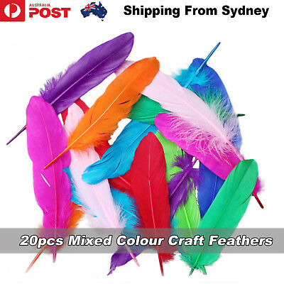 20pc Mixed Colour Goose Feathers Beautiful 16-20cm DIY Crafts Wedding Party Deco