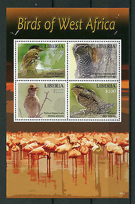 Liberia 2015 MNH Birds of West Africa 4v M/S II Woodpeckers Larks Wryneck