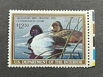 WTDstamps - #RW56 1989 - US Federal Duck Stamp - Mint OG NH