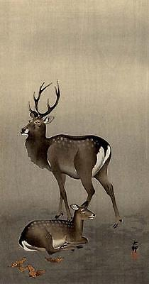 Japanese Reproduction Woodblock Print 1 by Ohara Koson on Cream Parchment Paper.