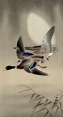 Japanese Reproduction Woodblock Print 3 by Ohara Koson on Cream Parchment Paper.
