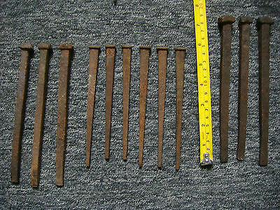 Square Nails - Collection Of 12 Various Square Steel Nails