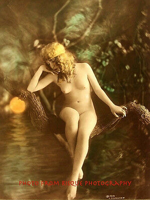 """Golden Haired Nude Woman Sitting In Tree 8.5x11"""" Photo Print Naked Nature Pose"""